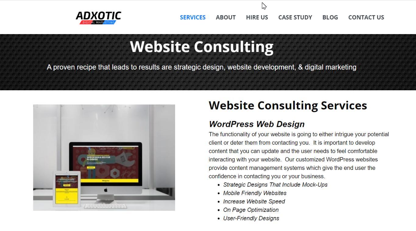 adxotic website consulting
