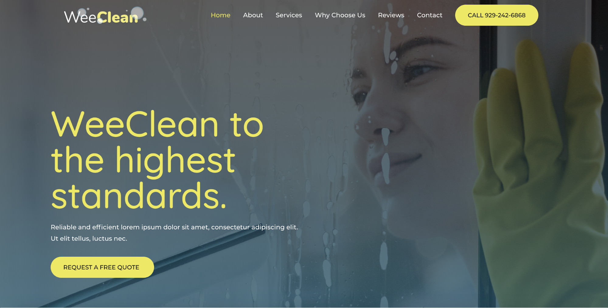 cleaning agency astra starter site