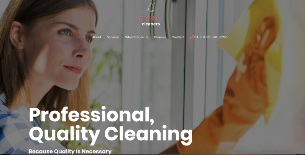 cleaning services astra starter site