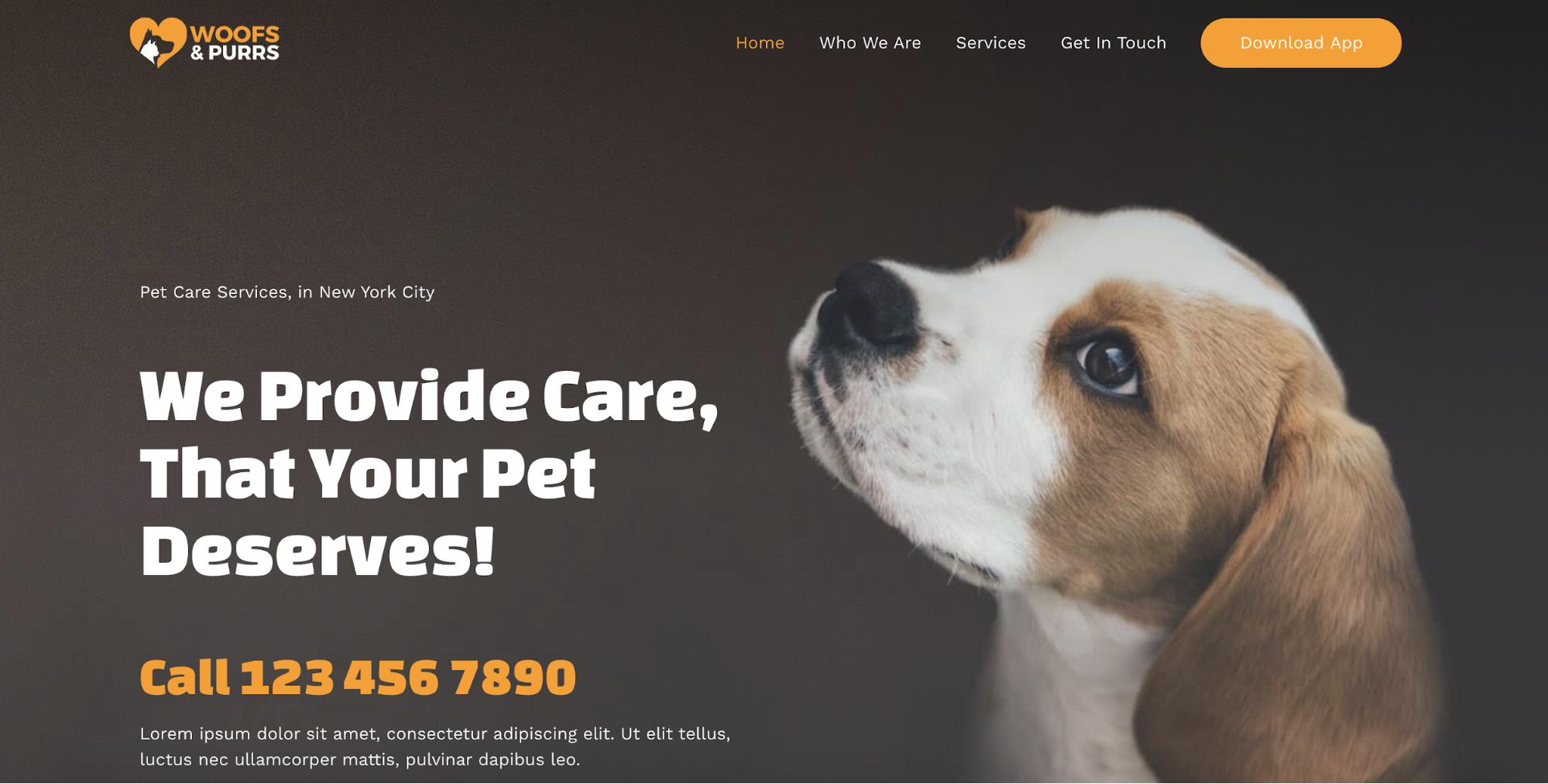 pet services starter templates
